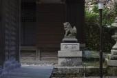 菅浦、須賀神社、琵琶湖